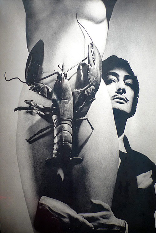 dali-lobster