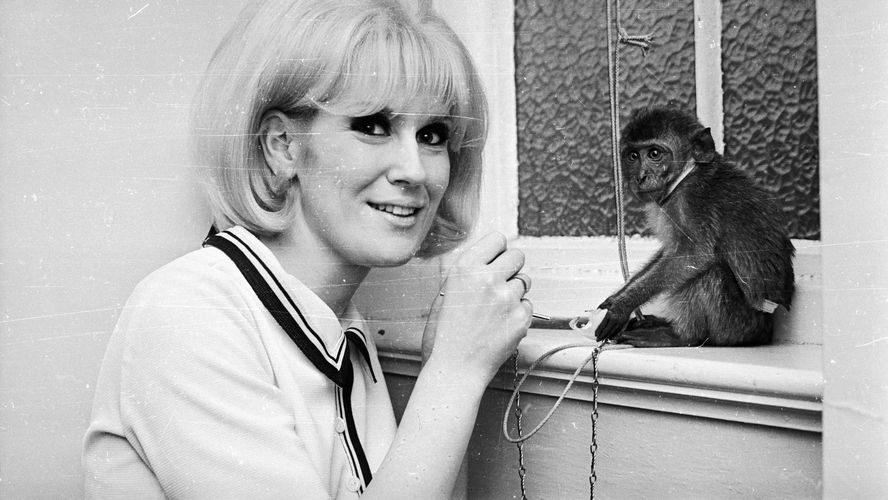 dusty-springfield